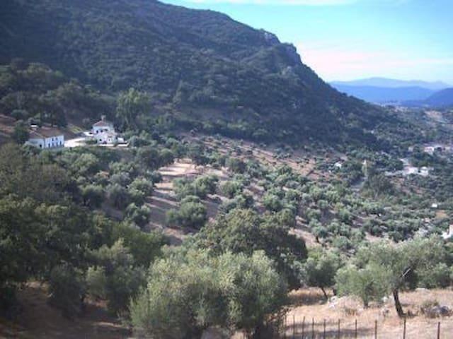 Alojamiento Rural Las Cuevas de El Bosque - El Bosque - Casa