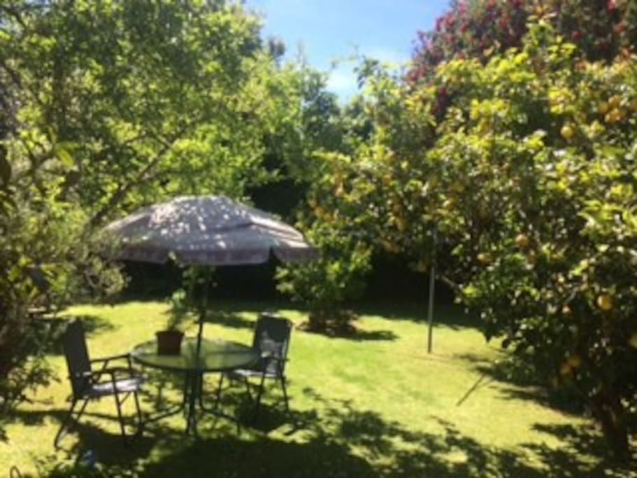 Private secluded back garden