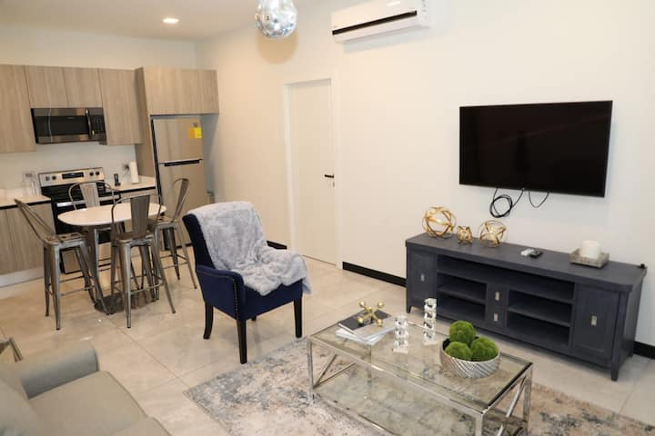 Luxury Exclusive 1 Bdrm Apartment- Centric Safe