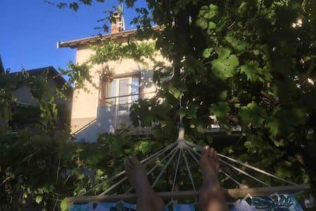 Maison de village grande terrasse jardin Veynes