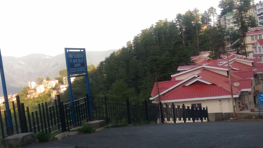 J.K. Villa in Pine forest valley of Shimla - Shimla - Apartment