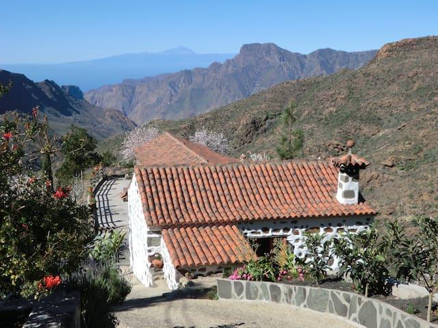Casa Rural para familias y grupos de amigos. - Tejeda - Huis