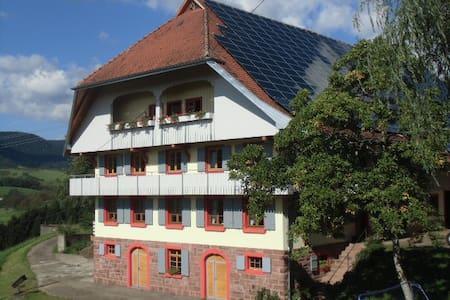 Ferien auf dem Fußbühlhof - Oberharmersbach - Appartement