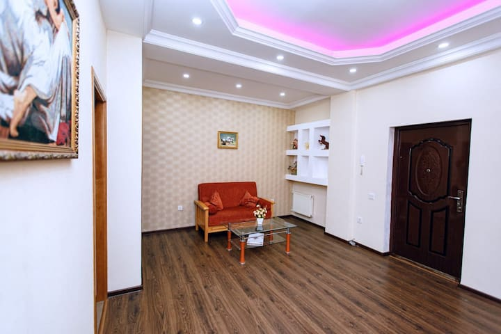 Beautiful apartment incenter