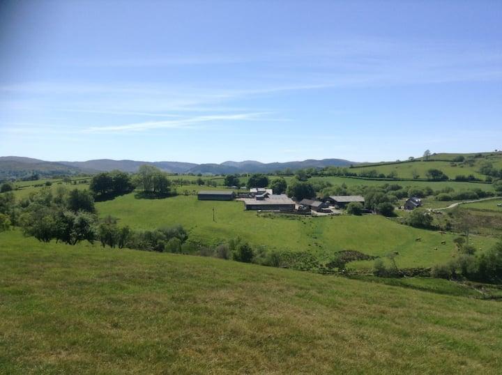 Fferm y Bryn (Bryn Farm)