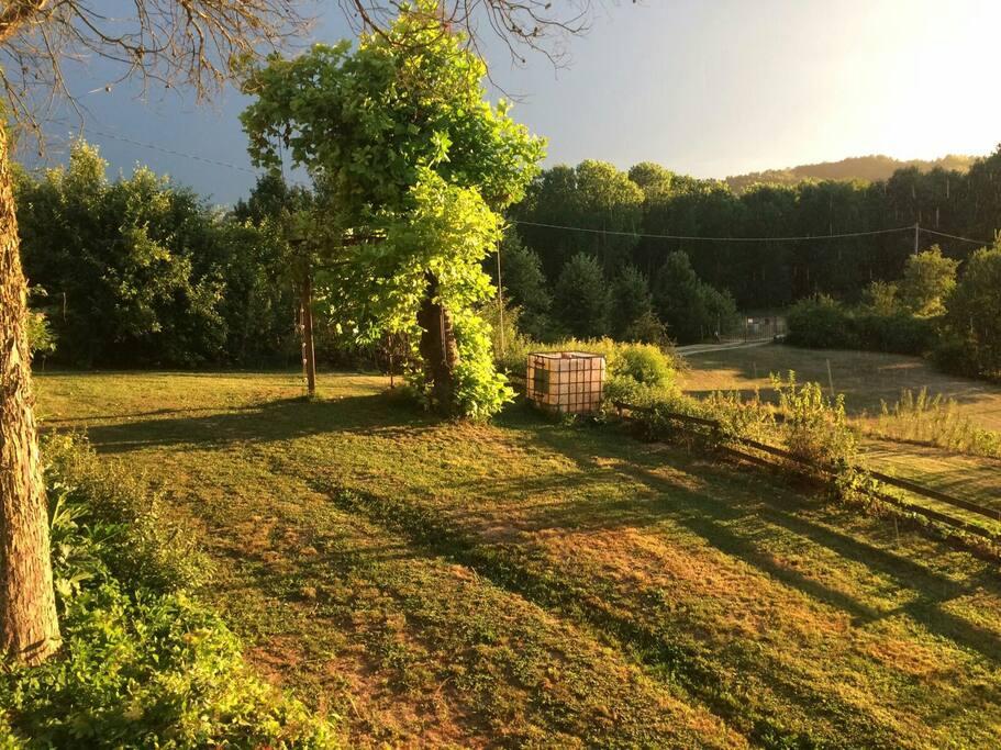 giardino al tramonto