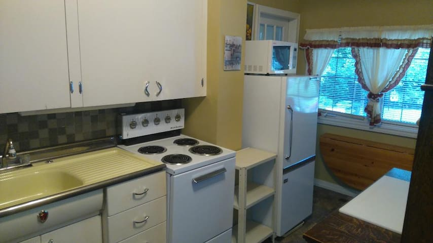 Fully equipped kitchen has apartment sized stove, fridge, and microwave.