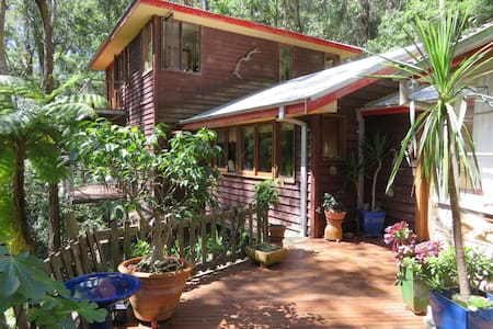 Rainforest retreat - Killcare