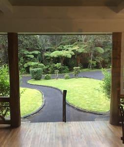 Beautifully restored home  at Kilauea Volcano - Volcano - Apartment