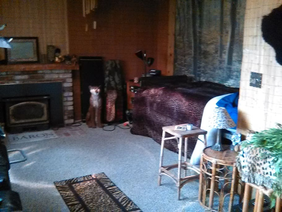 Den room.