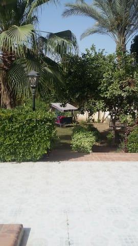 Villa Dr. Atef Darwish