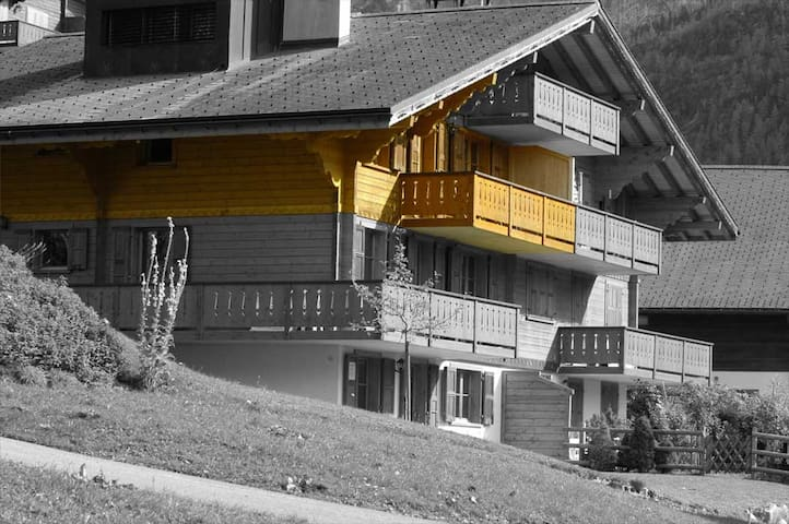 Le Grand Chamois - Les Diablerets - อพาร์ทเมนท์