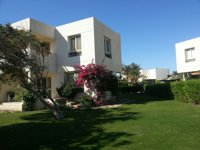 Sea & beach front villa for rent - South Sinai Governorate - House