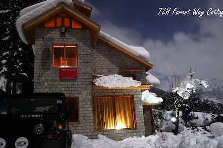 TLH Forest Way: Superior Room - LF - Manali - Bed & Breakfast
