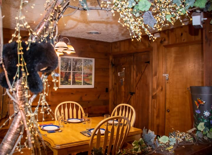 Beary Wild Cabin in City Center