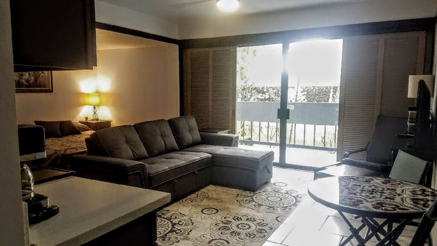 Newly renovated suite with Open floor plan!