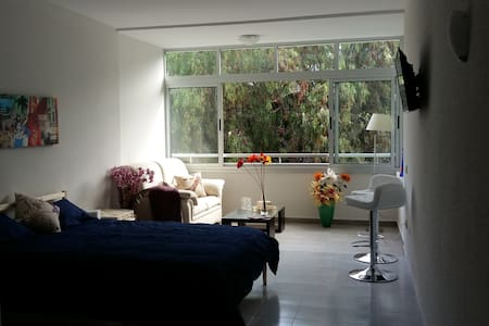 Charming Studio near Park - Puerto de la Cruz - Apartament