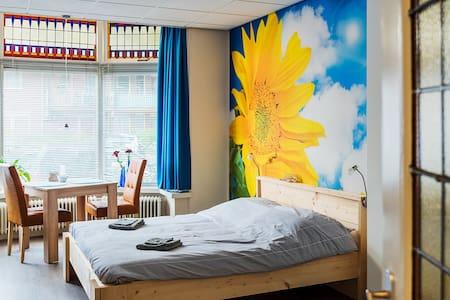Moderne en comfortabel kamer, loopafstand centrum - Nijmegen - House