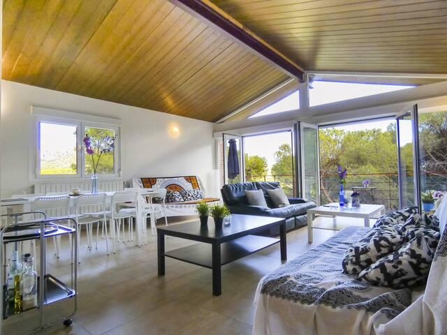 Salón luminoso, con cocina y terraza con vistas. Foto 5-2019