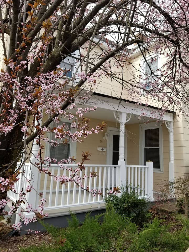 Blossoming tree overlooks the front porch.