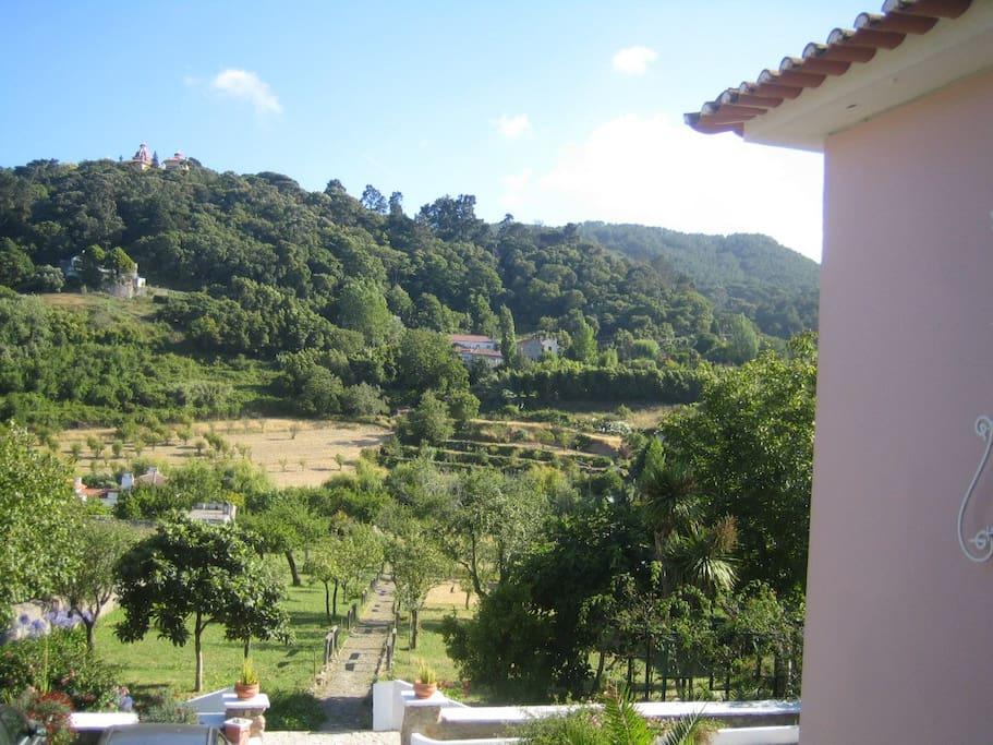Terrace View - Vista Terraço