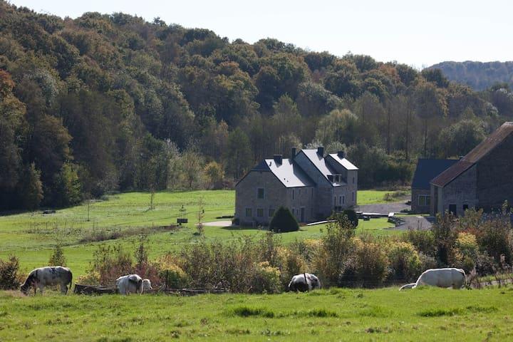 Moulin de Vaulx- 14 pers - Mettet - Casa
