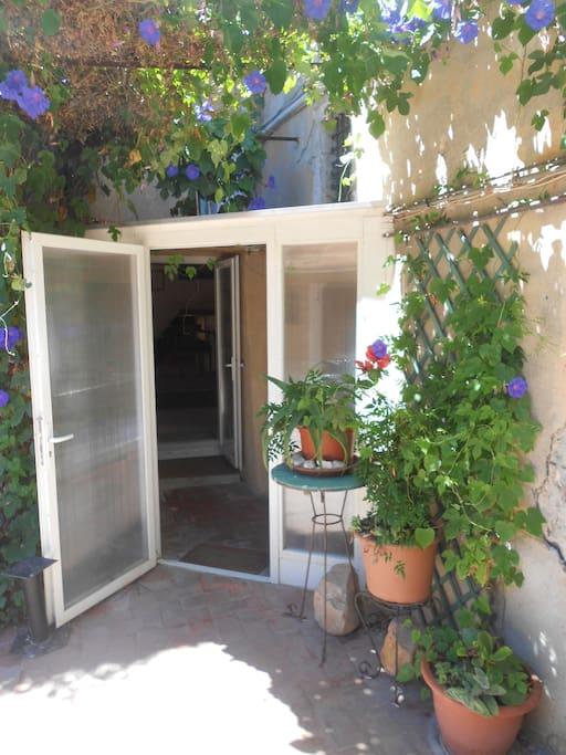 Entrée/Entrance/Ingresso