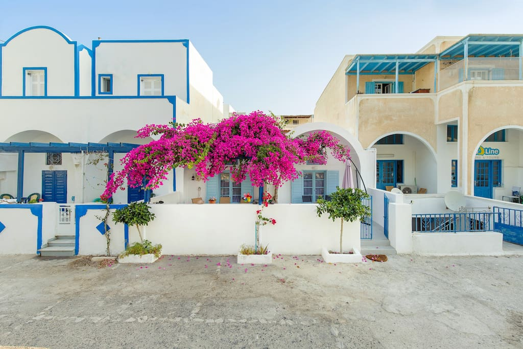 The house with the old bougainvillea