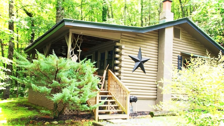 The Black Bear Cabin