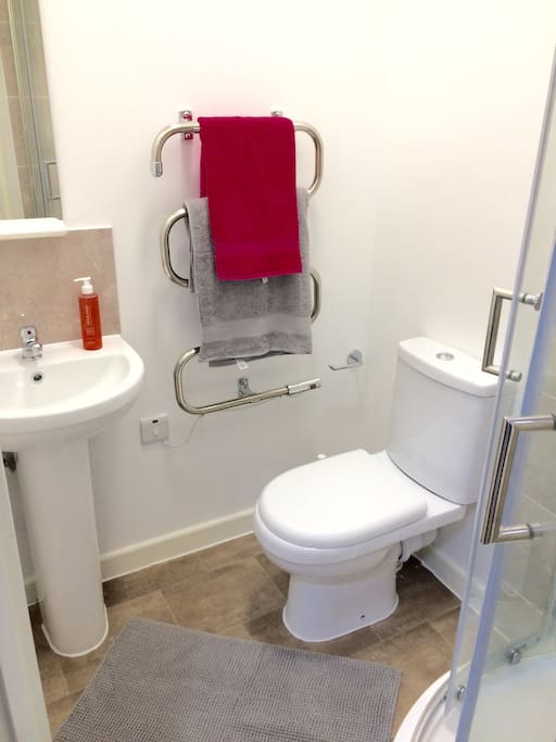 Ensuite with sink toilet and shower