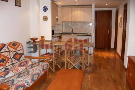 Sallent 3000 apartamento 2/4 - Sallent de Gállego