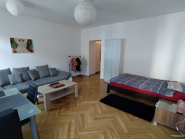 Nice Apartment with perfect connections