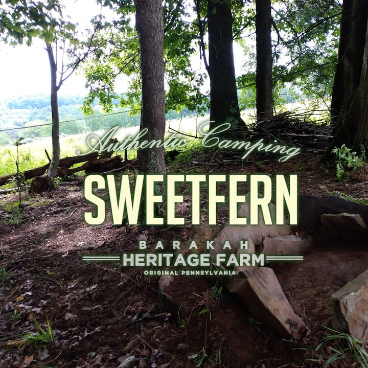 Barakah Heritage Farm Sweetfern Campsite