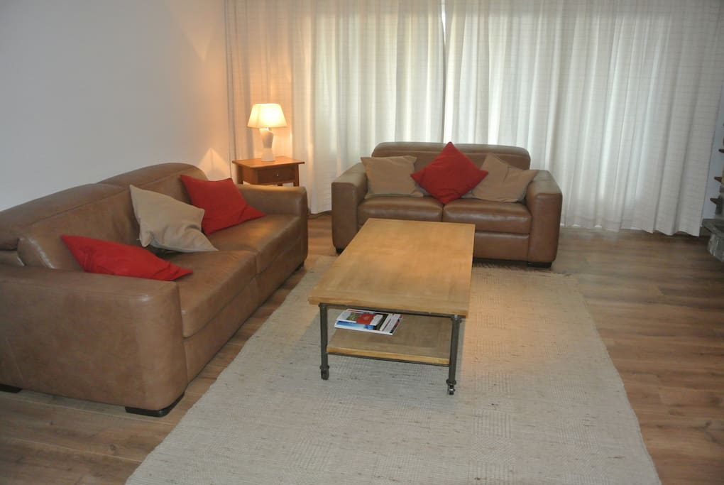 le salon spacieux et confortable, avec un canapé convertible deux places