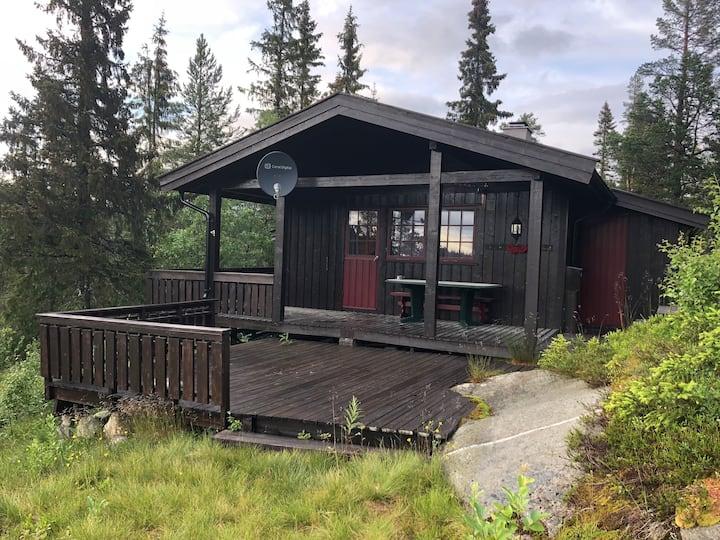 Hytte i Eggedals Vestfjell, rett ved Madonnastien