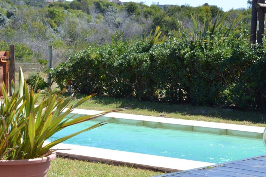 Casa frente al mar hermosa vista houses for rent in for Muebles en maldonado uruguay
