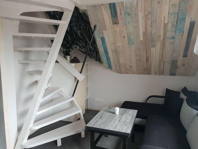 Cozy Apartment in Žaliakalnis 12