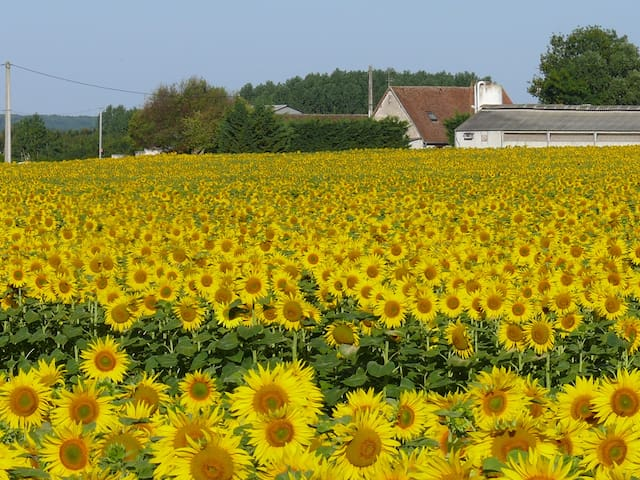 Bed&Breakfast sdb privative - Beauval, Chambord