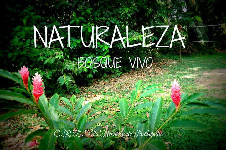 A 5 min de Puerto Maldonado Full Naturaleza Relax.