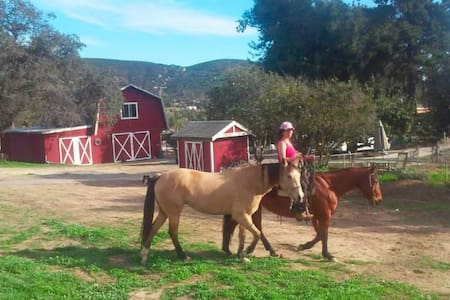 Remedy Ranch Barn Loft