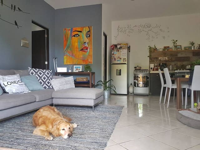 FULL APARTMENT 1 BLOCK AWAY FROM THE BEACH - Playa del Carmen - Appartement