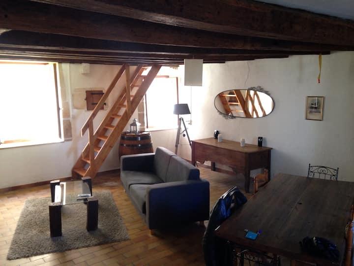Charmante maison bord de rivière à Chauvigny