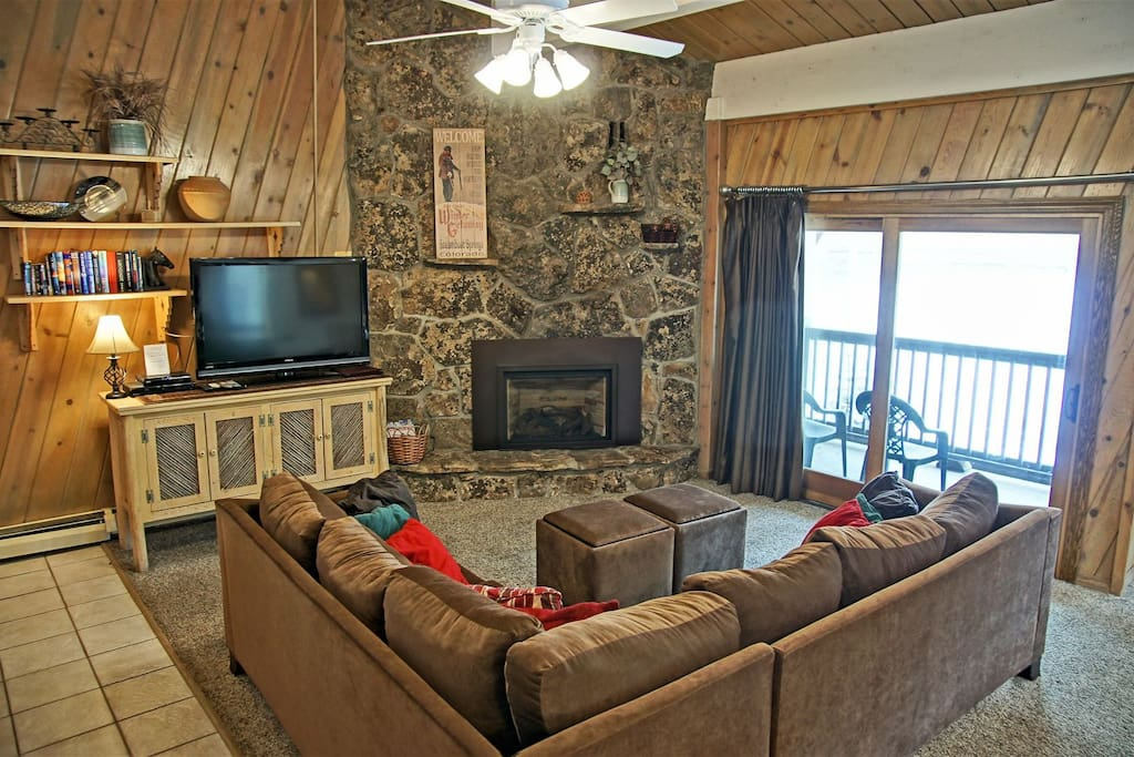 Living Room - Large HDTV, Blu Ray, Stereo, Fireplace, & Books