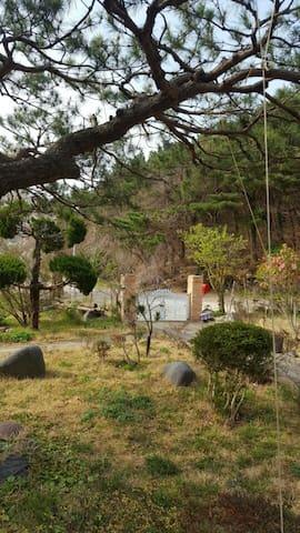 숲속힐링 - Heunghae-eup, Buk-gu, Pohang-si - Departamento anexo