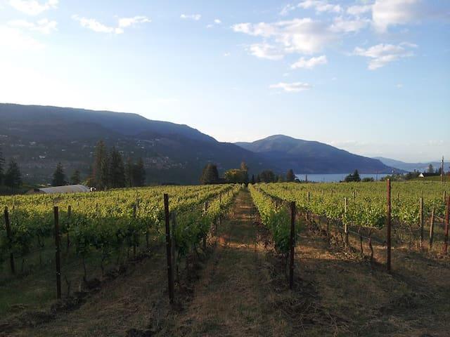 Wine Trail Suite - West Kelowna - Casa