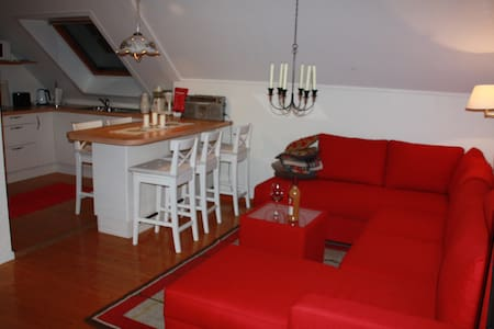 Cosy apartment in central Voss