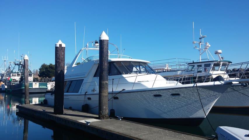 Beautiful Boat in Bellingham - Bellingham - Barco