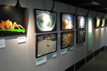 海科館有趣的展覽,兼具知識與知性。