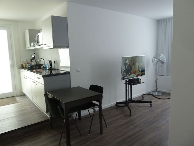 1 Zimmer Appartment ca. 40,0 m²