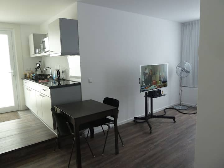 1 Zimmer Apartment ca. 40,0 m²
